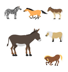 horse pony stallion isolated different breeds vector image