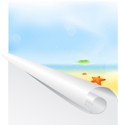 Graph summer background vector image vector image