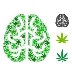 brain collage of hemp leaves vector image