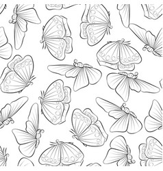 butterfly coloring book seamless pattern vector image