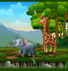 cartoon giraffe and elephant playing in jungle vector image