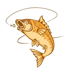 catch a fish vector image