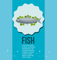 fresh fish and salad healthy food vector image