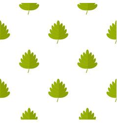 Green hawthorn leaf pattern seamless vector