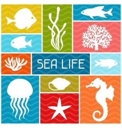 Marine life background design with sea animals vector image