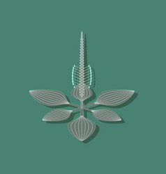 paper sticker on stylish background plant plantago vector image