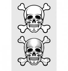 skull and skeleton bones vector image