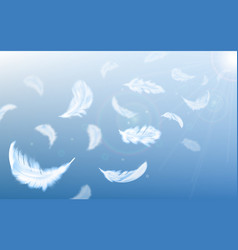 white feathers fly in air on blue sky background vector image