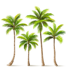 Palm trees set vector