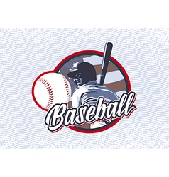 BASEBALL FLAG USA LABEL vector image