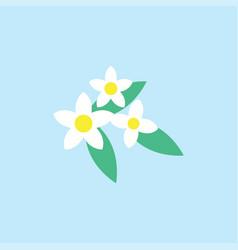 Jasmine flower icon design template isolated vector