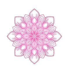 Pink circular lotus mandala flower pattern vector