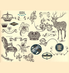 set of hand drawn elements in vintage style vector image