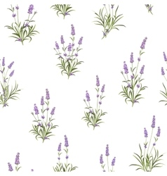The Lavender Seamless pattern vector