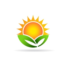 Sun eco plant image Concept of ecology green vector image vector image