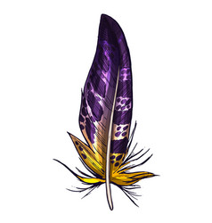 Colorful detailed purple and yellow bird feather vector