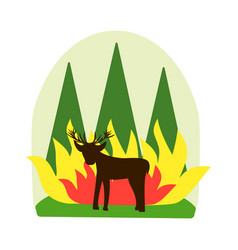 Forest fire concept destruction animals and vector