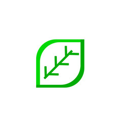 green eco leaf logo icon design template vector image