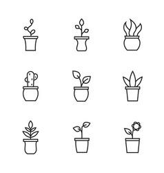 set flower pot vector image