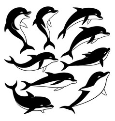 Set of black dolphins vector