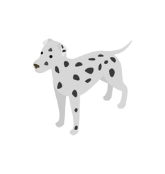 Dalmatians dog icon isometric 3d style vector image vector image