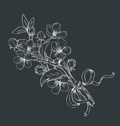 blooming tree hand drawn botanical blossom vector image