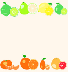 Citrus fruits on a light background vector