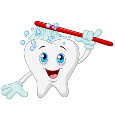 Happy tooth brushing vector image