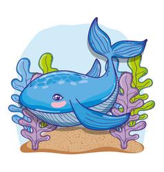whale undersea animal cartoon vector image