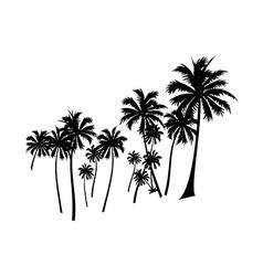 icon palm tree vector image