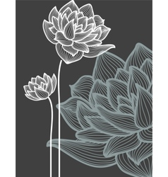 flowers over black background vector image vector image