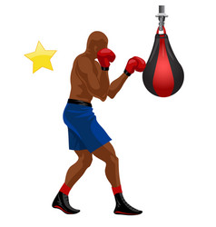 afro-american boxer boxing punchball in blue vector image