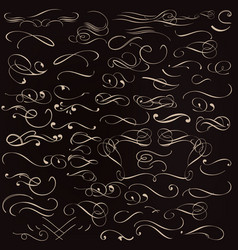 Collection of calligraphic flourishes and swirls vector