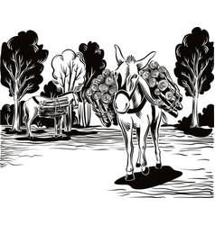 Donkeys to work vector