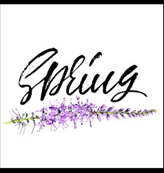 Handwritten lettering spring hand drawn vector