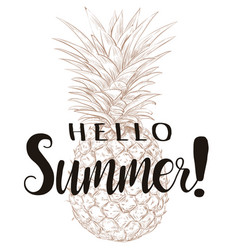 hello summer pineapple silhouette vector image