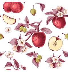 seamless pattern with apple fruits flowers and vector image