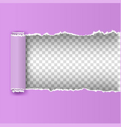 torn paper with ripped edges vector image