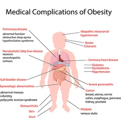Cartoon of Medical Complication of Obesity vector image