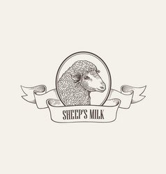 head of sheep inside round frame decorated with vector image