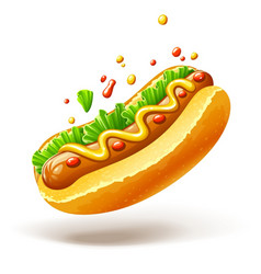hot dog with sausage lettuce vector image vector image