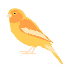 Animal clip art a yellow canary vector