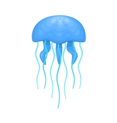 Blue and cyan jellyfish vector