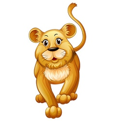 Cute lion cub with happy face vector