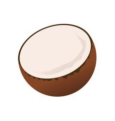 Half coconut fruit tropical food image vector