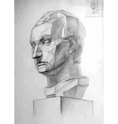 Pencil drawing of Gattamelatas head vector image