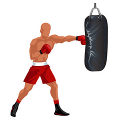 Sportsman boxing punching bag professional boxer vector