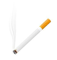 cigarette 02 vector image