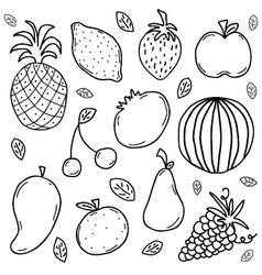 doodle fruits set vector image