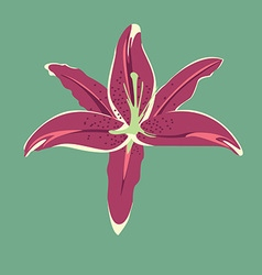 Orchid preview vector